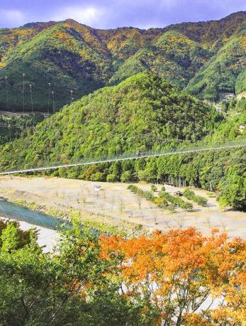 十津川村 谷瀬の吊り橋と紅葉