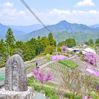 世界遺産「熊野参詣道小辺路」