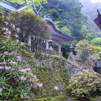 十津川村 玉置神社
